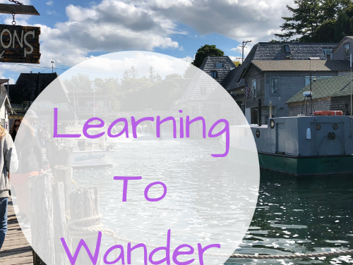 Learning To Wander