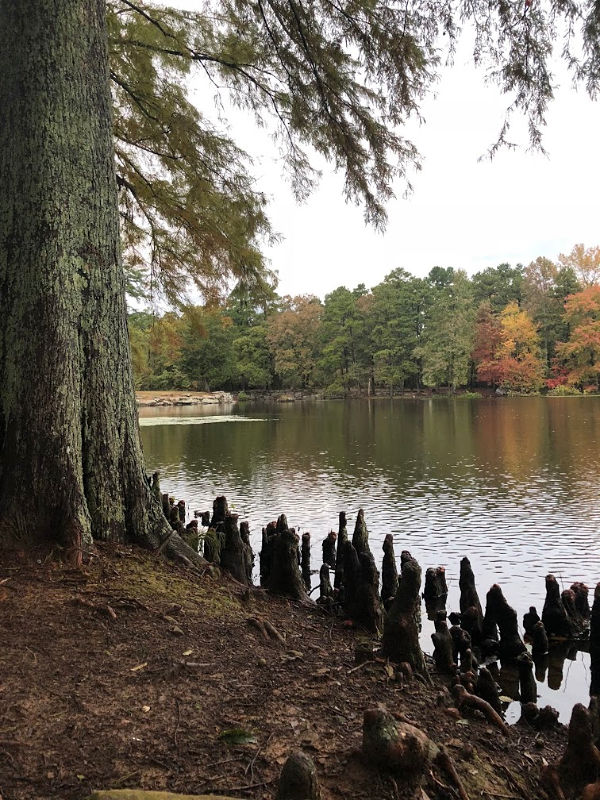Lake Bailey, Petit Jean State Park