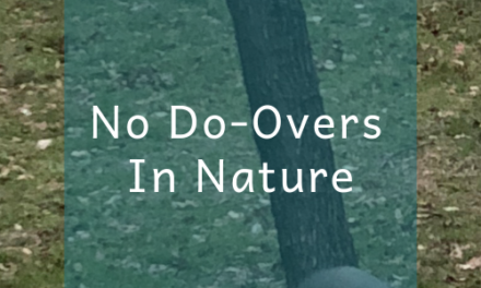 No Do-Overs In Nature