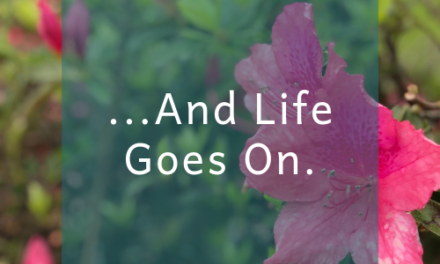 …and life goes on.